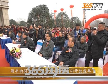 丽丰铂羽公馆视频图