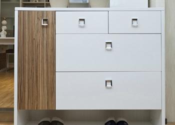 玄关柜子的设计能够充分彰显主人的品位以及柜子的用处.