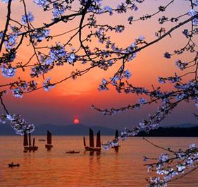 大图集|苏州最美最上镜的15个地方,你去过几个?