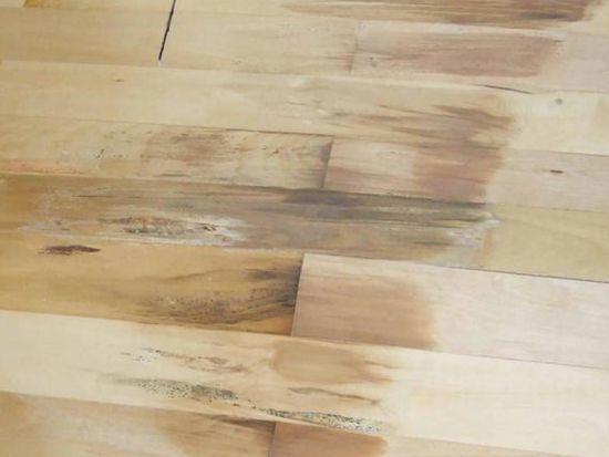 地板起泡生霉斑 投诉问题不断增多