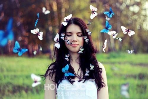 全球十大濒危蝴蝶,全球八百多个品种