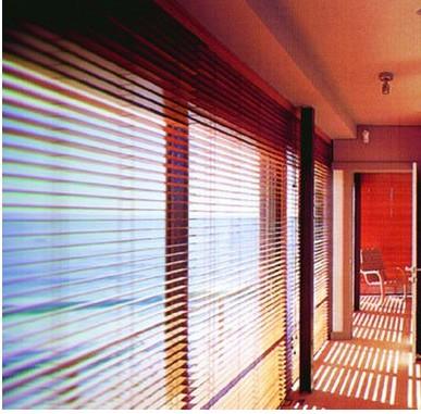 """365装谈:环保钢木门窗不能与""""低碳""""划等号"""
