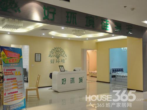 365家居淘乐惠:好环境硅藻泥 让家居环境不再单一
