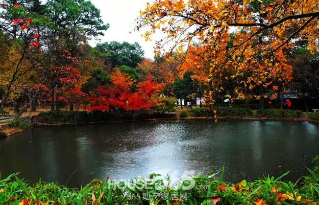 吴江西山风景区