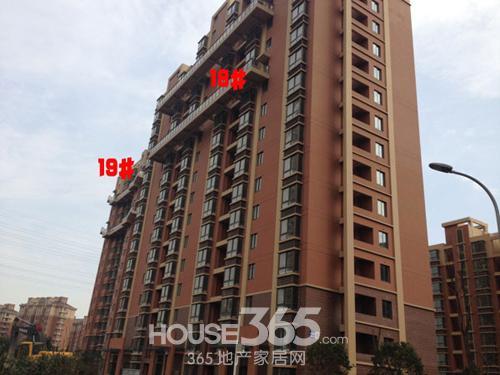 牡丹祥龙湾18、19#楼实景图 365地产家居网/摄
