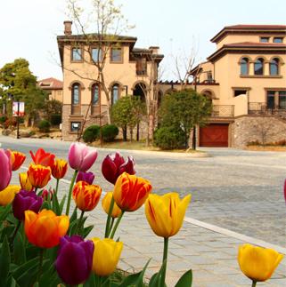 新湖仙林翠谷:让回家成为穿越花园的旅行