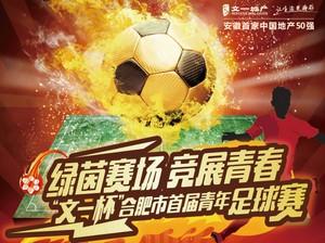 合肥首届青年足球赛跟踪