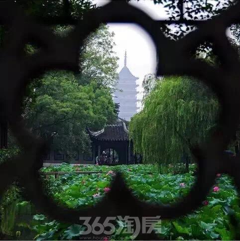 晋府水巷别墅|苏州园林缩影 独享拙政园美景