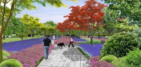 园林灌木花丛手绘图