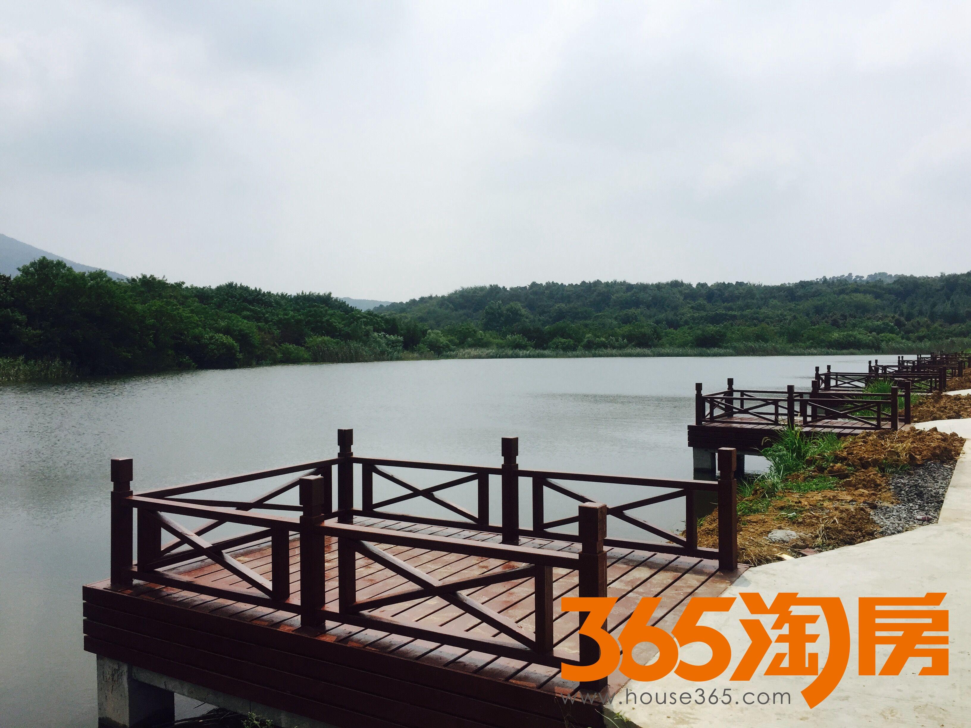 邳州银杏湖风景区