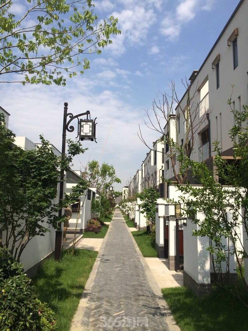 冠南苑嘉和园,古城区园林式别墅,新中式园林景观,汇聚着苏式园林精粹