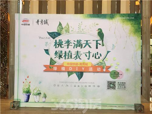 绿植diy活动展板 365淘房 邹宇/摄)
