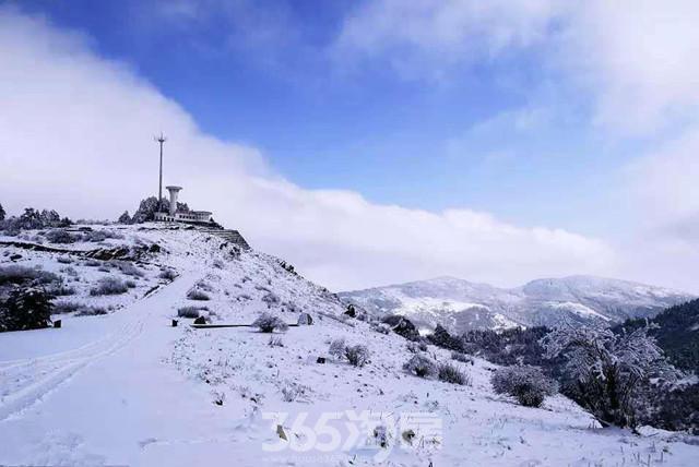 湖北迎今年入秋第一场雪 存雪约3厘米厚(图)