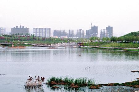 纳帕溪谷金源项目位于西安浐灞生态核心区,东临桃花潭风景区,南接华清