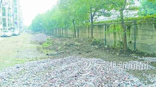 为增加车位损毁小区绿化带引发居民不满
