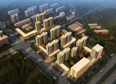 龙城2011