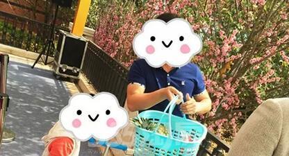 壁纸 大熊猫 动物 416_225