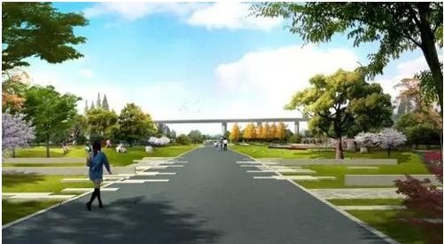 """姚坊门创智公园景观绿化沿土城头路向两侧扩散,遵循践行""""海绵城市""""的"""