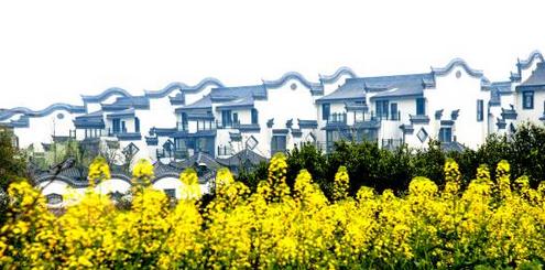 棠溪人家:最是一年春好处 仅此棠溪满庭芳