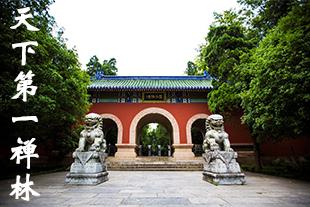 光影石城245:天下第一禅林在哪?你知道吗?
