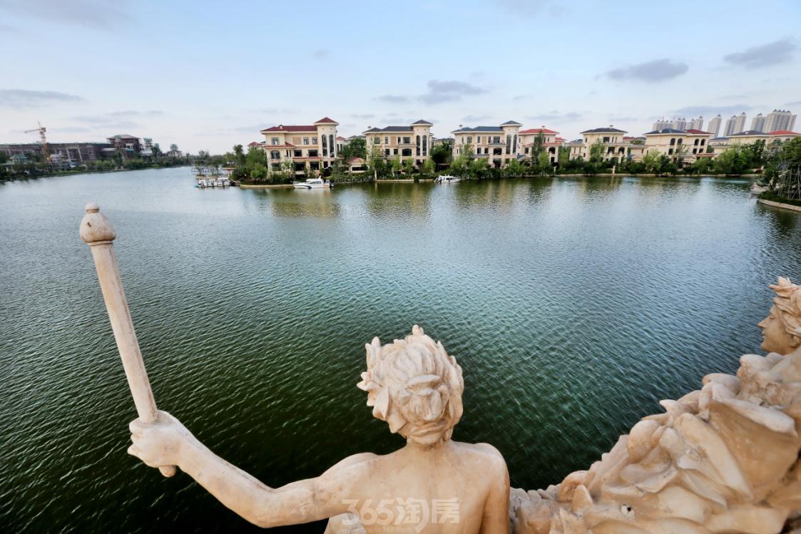 上海海上风景图片