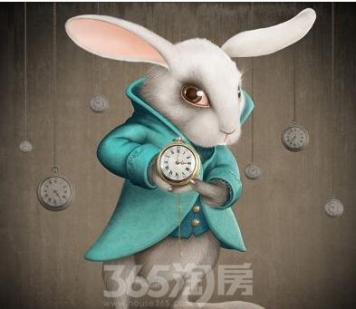 泡泡泥兔子手工制作