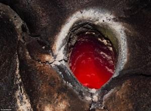 摄影师拍熔岩烧毁树木瞬间