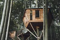 组图:森林深处的树屋酒店 你敢去住吗?