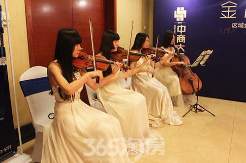 优雅的小提琴演奏