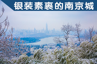 光影石城271:这样银装素裹的南京城你见过吗?