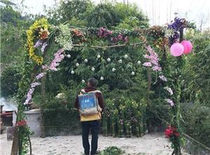 婚礼界的清流 小夫妻千元打造小清新风