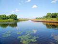 蒙城北淝河湿地公园获批