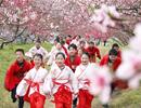 实拍2017合肥三十岗桃花节开幕盛况 满树和娇烂漫红【组图】