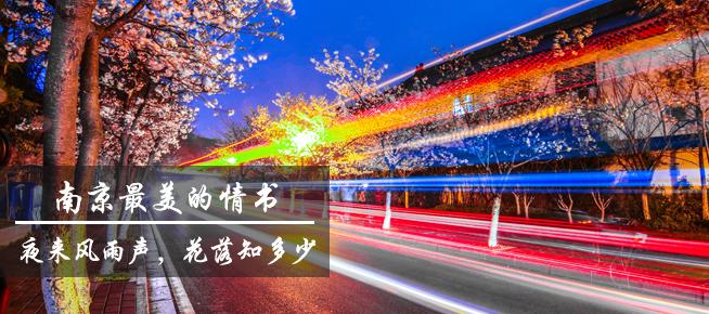 光影石城289:这是春天寄给南京最美的情书