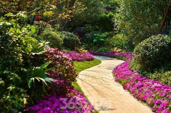 欧式地产园林花