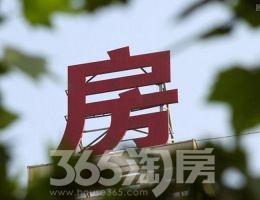 江苏:保房地产健康发展 加大违法违