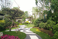 高清|大明宫版块中国铁建西派国际 赏大气磅礴园林实景