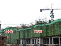 见证家的成长 新华联梦想城6月工程进度实探|图集