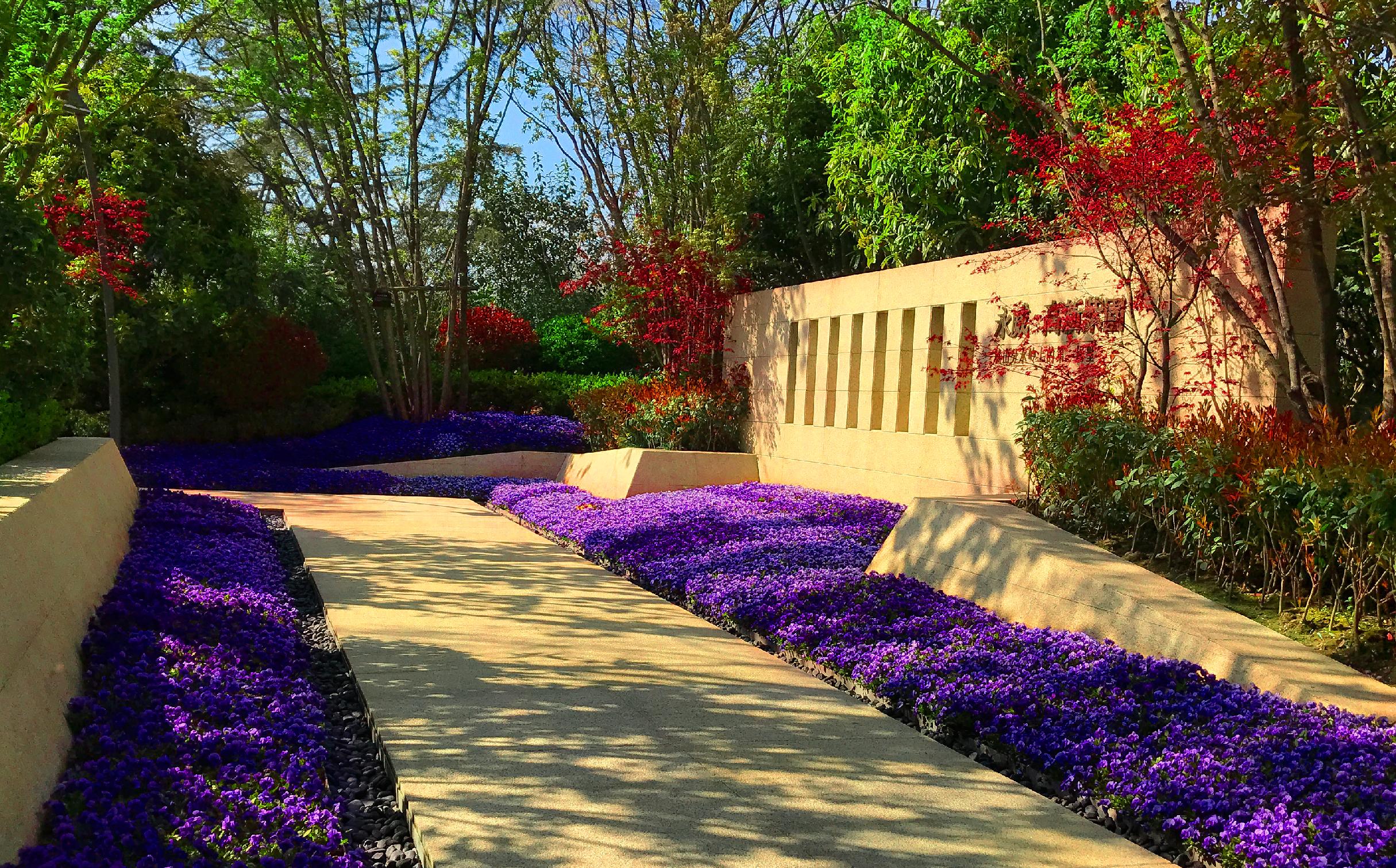 高清|一山一水一庭院别墅人家在永威 紫园艳阳中的美景赏析