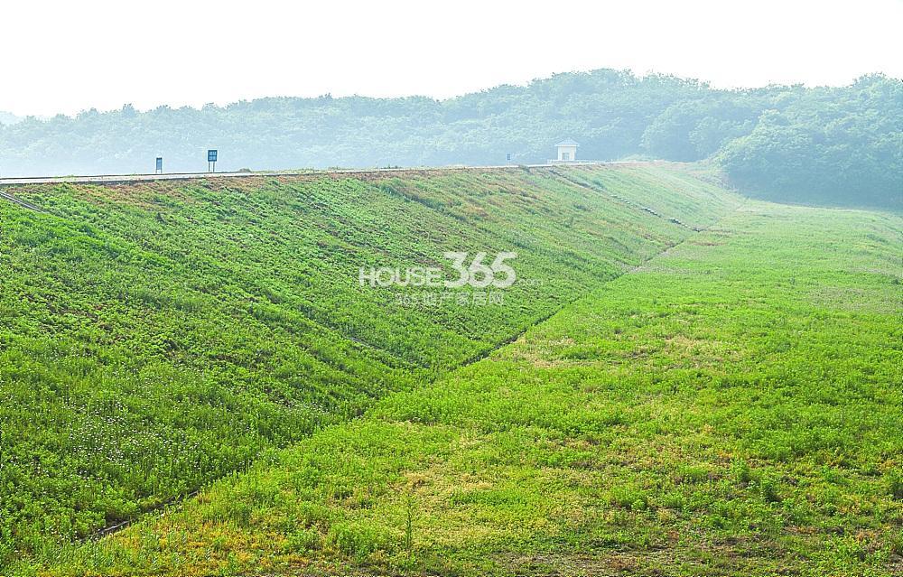 瑞安翠湖山实景图