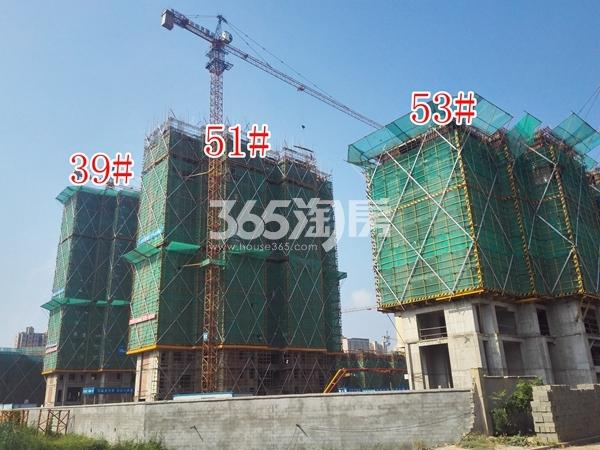 绿地工润和平壹号四期39#、51#、53#工地实景图(8.16)