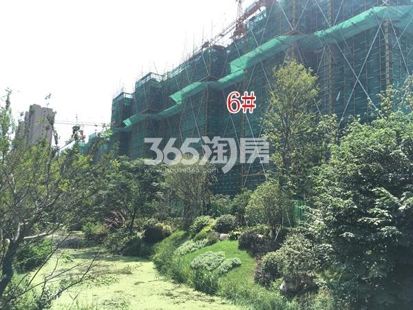 蓝光雍锦里高层实景图(2017.8 摄)