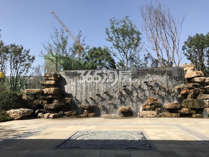 蓝光公园华府示范园区园林实景拍摄(2017.9.11)