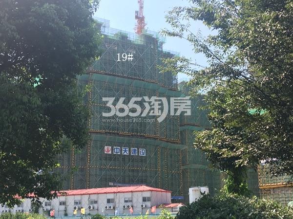 西溪碧桂园一期19#楼高层工程实景(2017.9)
