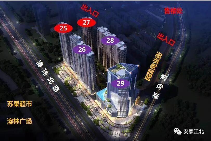 万江共和新城红公馆鸟瞰图