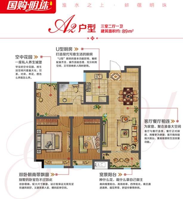 蚌埠国购广场-国购明珠  A2 三室二厅一卫89㎡